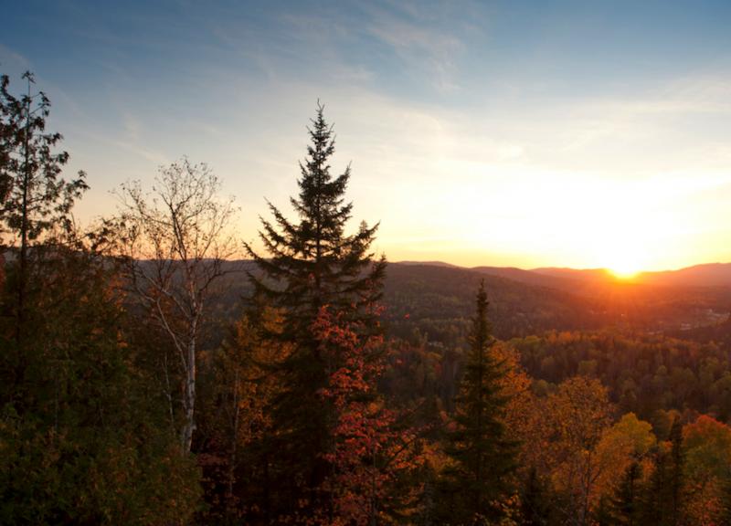 Le parc régional de la Forêt Ouareau